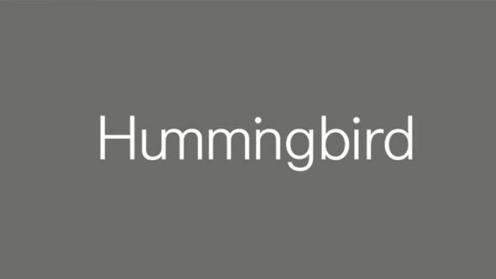Londra merkezli Hummingbird Ventures, yerli girişimlere de yatırım yapacağı 200 milyon dolarlık iki yeni fonunu duyurdu