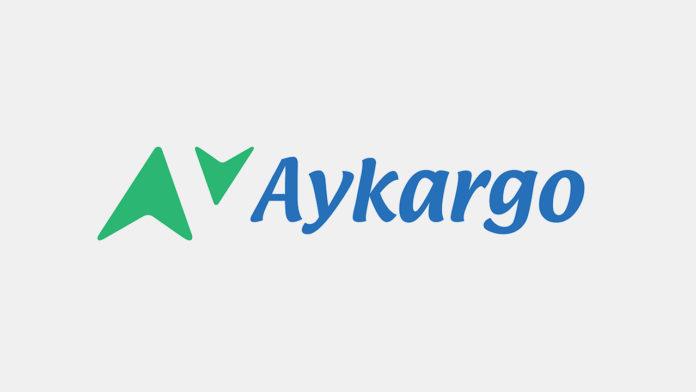Aygaz ve McKinsey ortaklığında kurulan yeni kargo şirketi: Aykargo