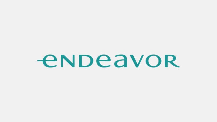 Endeavor Türkiye'nin pandemi etkilerini ölçen anketinin ikinci araştırması, katılımınızı bekliyor